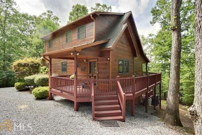 Blairsville Single Family Home For Sale: 422 Laura Beth Ln