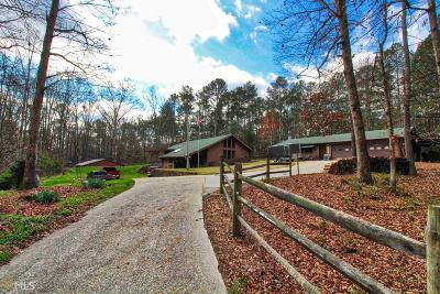 Conyers Single Family Home For Sale: 219 Potts