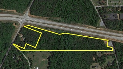 Hampton Commercial For Sale: Hwy 20 W Bruton Smith Pkwy