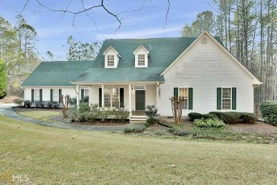 Newnan Single Family Home New: 2390 Mt Carmel Rd