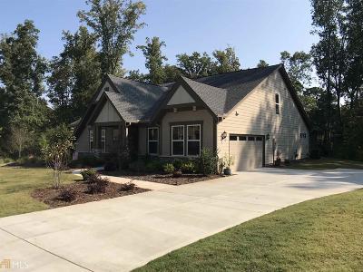 Canton Single Family Home New: 115 Millstone Way #38