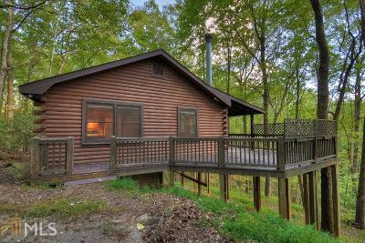 Blue Ridge Single Family Home For Sale: 55 Flying Arrow Ct