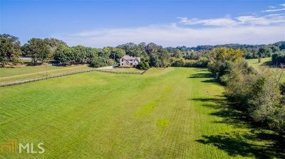 Suwanee Single Family Home For Sale: 5325 Suwanee Dam Rd