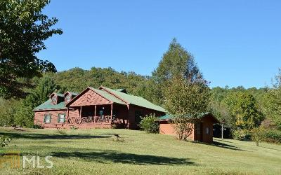Hiawassee Single Family Home For Sale: 4253 Swallows Creek Rd
