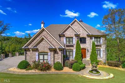Alpharetta, Duluth, Johns Creek, Suwanee Single Family Home For Sale: 8560 Spyglass Dr