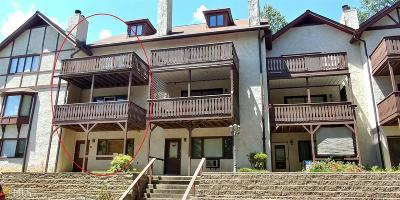 Helen GA Condo/Townhouse Under Contract: $145,900