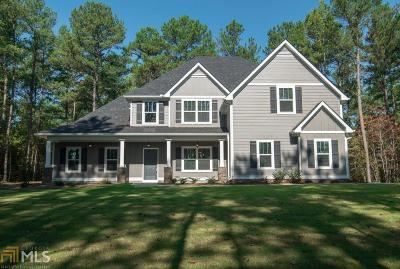 Moreland Single Family Home New: 2324 Highway 54 #7