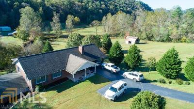 Clayton, Clarkesville, Tiger Single Family Home For Sale: 7272 Warwoman Rd
