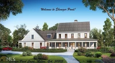 Alpharetta, Milton, Roswell Single Family Home For Sale: 12675 Ebenezer Pond Ct #2