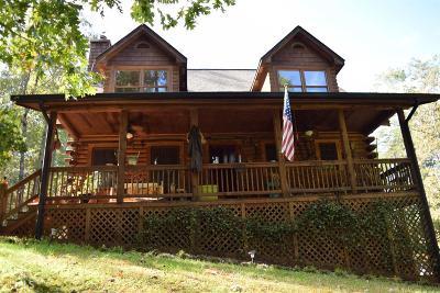 Dawson County Single Family Home For Sale: 893 Hensley Way #40