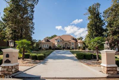 Lithonia Single Family Home For Sale: 1213 Greenridge Ln