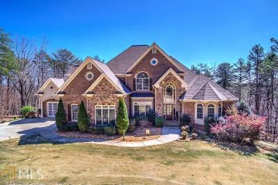 Dahlonega Single Family Home For Sale: 37 White Tail Ct