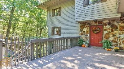 Pickens County Single Family Home For Sale: 172 Little Hendricks Mtn