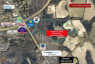 Statesboro Farm For Sale: Cawana Rd