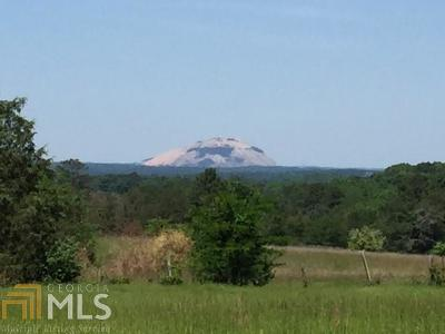 Conyers Farm For Sale: 1089 Pleasant Hill Rd