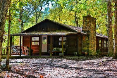 Carroll County Single Family Home For Sale: 275 Harper Ln