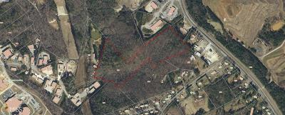 Hall County Commercial For Sale: 1812 Candler Rd