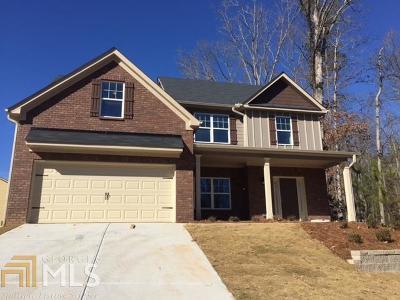 Douglas County Single Family Home New: 343 Shiloh Valley #21