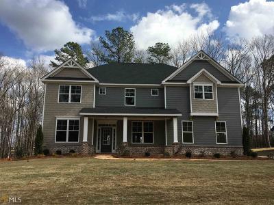 Mcdonough Single Family Home New: 117 Ruby Ln #105