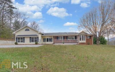 Blairsville Single Family Home For Sale: 243 Mt Pleasant Church Rd
