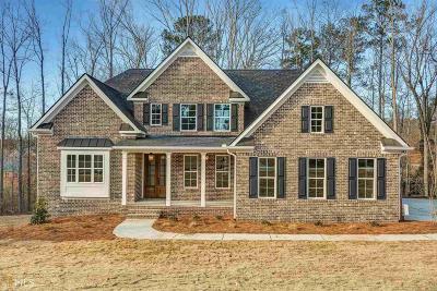 Douglasville Single Family Home For Sale: 7520 Sunridge Ln