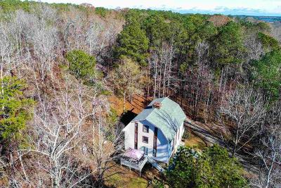 Henry County Single Family Home New: 522 Moccasin Gap Rd