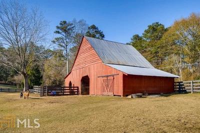 Alpharetta, Milton Single Family Home For Sale: 1865 Redd Rd