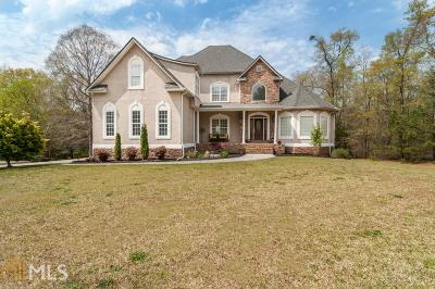 Mcdonough Single Family Home For Sale: 1086 S Bethany Rd