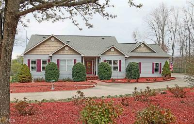 Blairsville Single Family Home For Sale: 507 Copperhead Rd