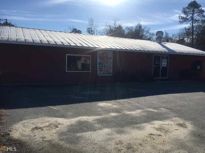 Commercial For Sale: 695 N River St