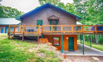 Blairsville Single Family Home For Sale: 824 Bunker Hill Rd