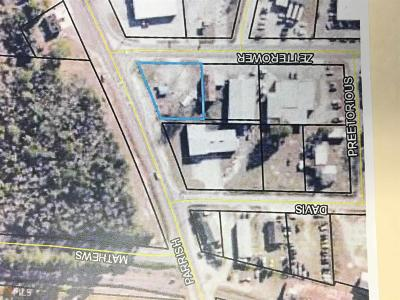 Statesboro Residential Lots & Land For Sale: N Zetterower Ave
