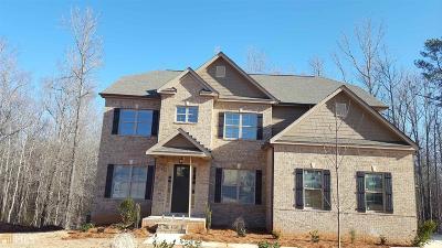 McDonough Single Family Home For Sale: 227 Shellbark Dr #30