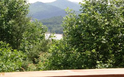 Hiawassee Single Family Home For Sale: 204 Rolling Acres Rd