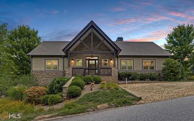 Rabun County Single Family Home For Sale: 21 Seasons View Ct