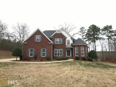 McDonough Single Family Home For Sale: 402 Tomahawk Trl