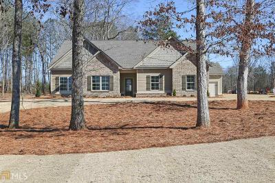 Henry County Single Family Home New: 316 Vantage Pt #76