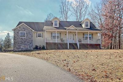 Blairsville Single Family Home For Sale: 238 Tanglewood Cir