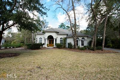 Camden County Single Family Home For Sale: 63 Wood Stork Ct