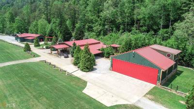Rabun County Single Family Home Under Contract: 390 Flying Ranch #6