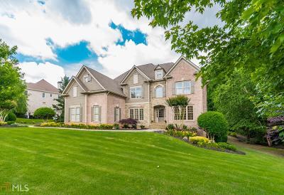Cumming Single Family Home For Sale: 2625 Creek Tree Ln