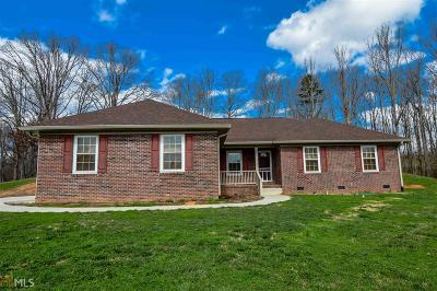 Towns County Single Family Home For Sale: 794 St Hwy 66 #65/80