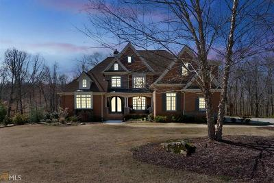 Dawsonville Single Family Home For Sale: 215 Summit View Ct