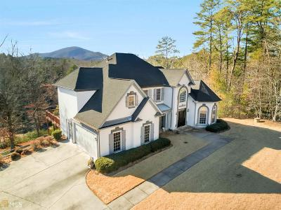 Habersham County Single Family Home For Sale: 123 Bear Paw Ct