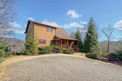 Hiawassee Single Family Home For Sale: 1236 Spaniard Point Rd #9