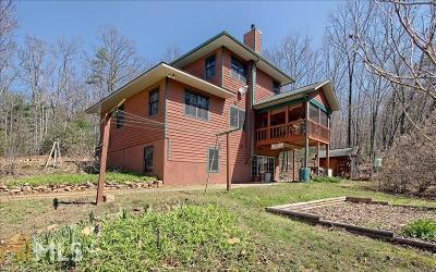 Blairsville Single Family Home For Sale: 151 King Pl