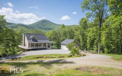 Hiawassee Single Family Home For Sale: 1340 Bud Walt Rd