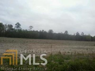 Brooklet Farm For Sale: Mud Rd #3