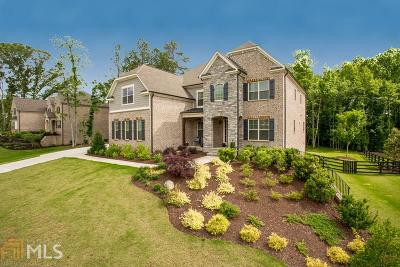 Milton Single Family Home For Sale: 4065 Hopewell Springs Dr