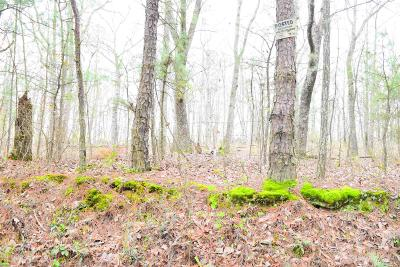 Monticello Residential Lots & Land For Sale: Barnes Mountain Rd